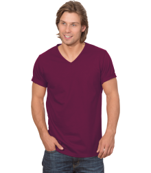 Trigema Herren V-Shirt 100% Biobaumwolle